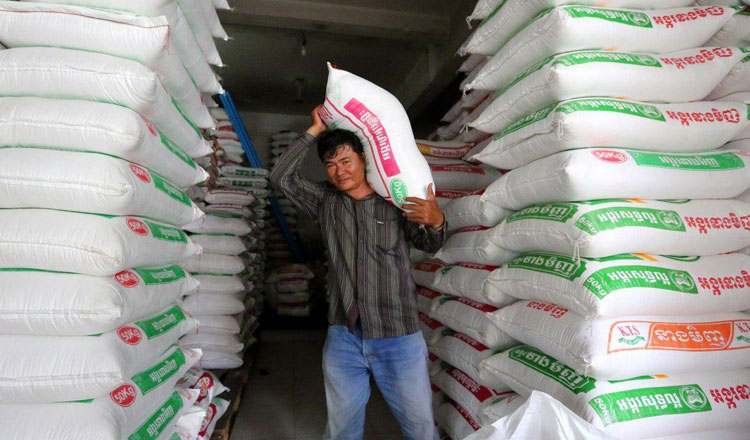 Rice exports 'unaffected by rain'