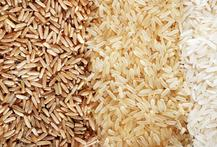 Demand Grows for Organic Rice